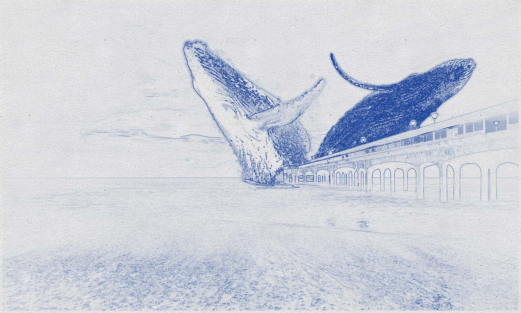 Early sketch for the Whale project