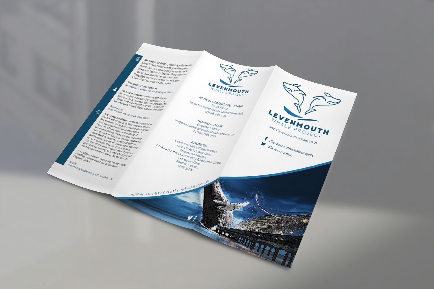Levenmouth Whale Project - Trifold Pamphlet