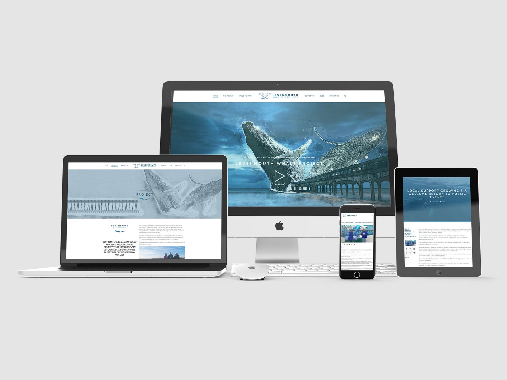 Levenmouth Whale Project - Web Development & Design